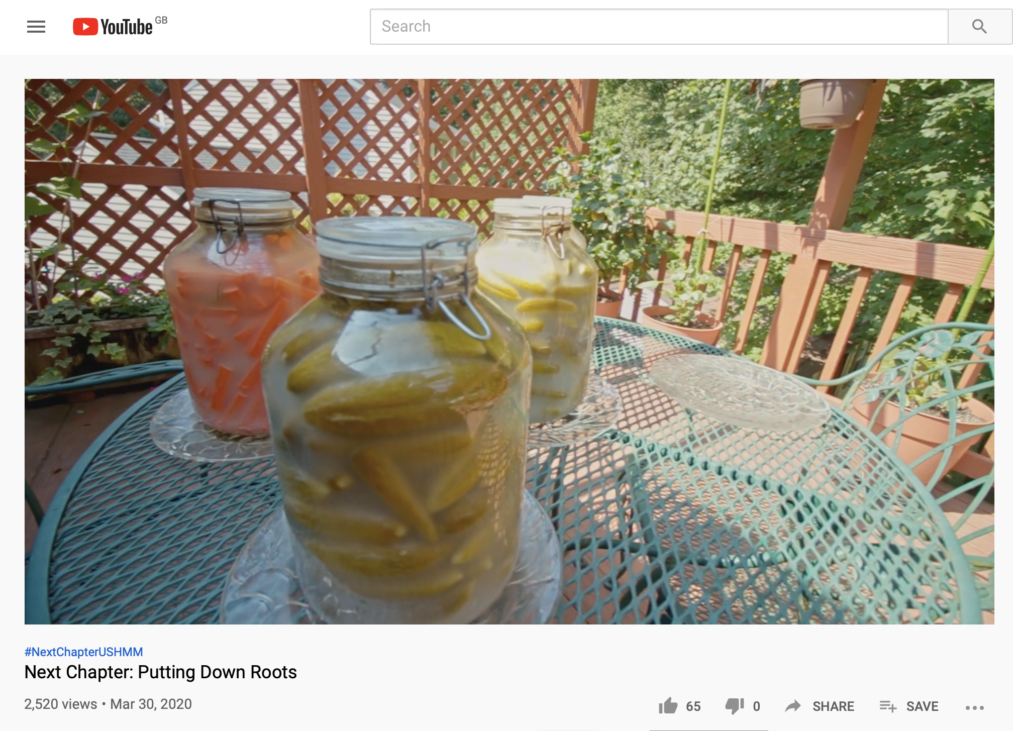 Nat Shaffir's garden bathed in sunlight, with a trio of freshly full jars of pickled vegetables on a the table