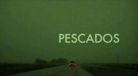 Screenshot from PESCADOS/FISH (Lucrecia Martel, 2010)